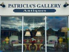 Patricia's Gallery